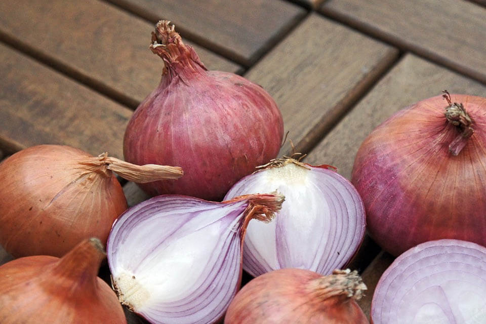 are onions good for you