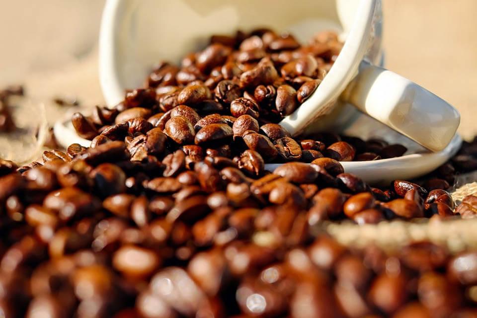 yerba mate caffeine