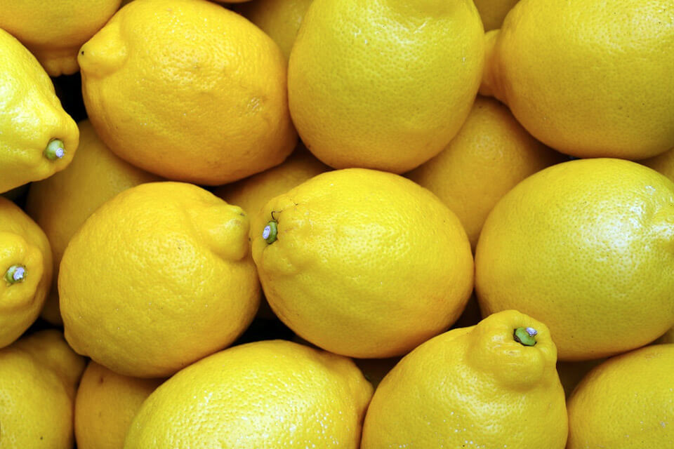 Which lemons are the best when you want to experience the benefits of drinking lemon with water?